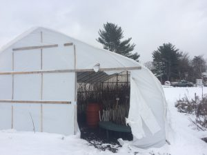 upper greenhouse in snow